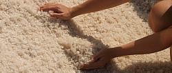 Touchovická sůl