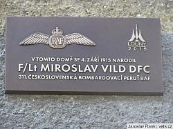 Miroslav Vild