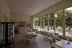 Kavárna v parku